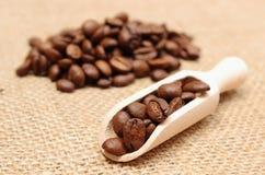 在咖啡木匙子和堆的咖啡豆  免版税库存照片