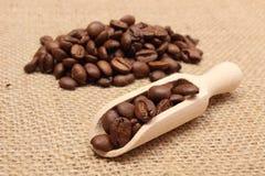 在咖啡木匙子和堆的咖啡豆 免版税图库摄影