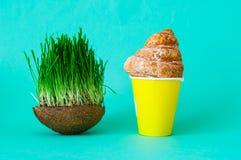 在咖啡杯和燕麦或绿草发芽的种子的新月形面包三明治在椰子碗 图库摄影