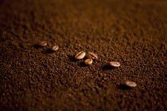 在咖啡粉末的咖啡豆 免版税库存图片