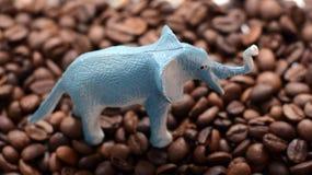 在咖啡豆的大象 免版税库存照片