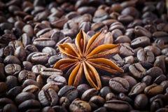 在咖啡豆背景的八角  免版税库存图片