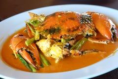 在咖喱粉的混乱油煎的螃蟹 免版税库存图片