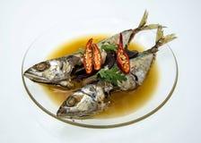 在咸汤的被炖的鲭鱼鱼 库存图片