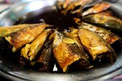 在咸汤的被炖的鲭鱼鱼 免版税库存照片