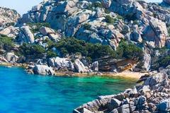 在品柱介壳的小海滩 免版税图库摄影