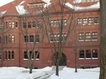 在哈佛校园里的历史建筑 图库摄影