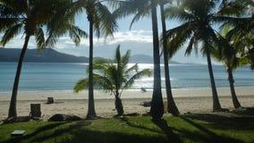 在哈密尔顿岛的日落 免版税库存照片