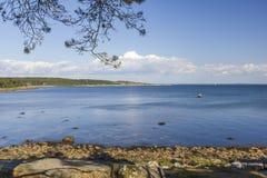 在哈尔姆斯塔德附近的海岸线在瑞典 图库摄影