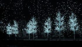 在哈德森庭院的圣诞树光 库存照片
