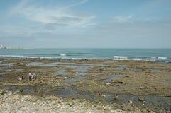 在哈桑二世清真寺的海滩 库存图片