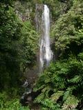 在哈纳高速公路毛伊夏威夷的瀑布 免版税库存照片