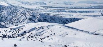 在哈萨克斯坦干草原的白色雪在冬天 库存图片