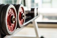 在哑铃的选择聚焦在健身和健身房室 库存图片