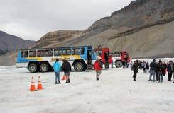 在哥伦比亚冰原的雪教练 库存照片