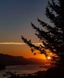 在哥伦比亚河的日出 库存图片