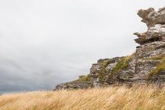 在哥得兰岛,瑞典的海岸线的石灰石峭壁 库存图片