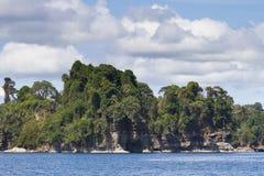 在哥斯达黎加的加勒比海岸的热带风景 免版税库存图片