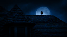 在哥特式屋顶的乌鸦在晚上 股票视频