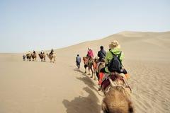 在唱歌沙子山的骆驼队 免版税库存图片