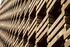 在商展米兰的生态 免版税库存照片