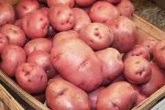 在商店的红色土豆 免版税库存照片