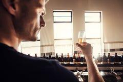 在啤酒厂工厂的男性酿酒者测试工艺啤酒 库存照片