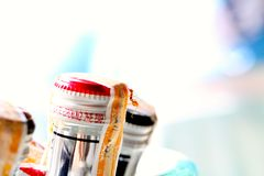 在啤酒瓶的泰国红色蚂蚁 图库摄影