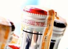 在啤酒瓶的泰国红色蚂蚁 免版税库存图片