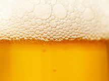 在啤酒的泡沫 免版税库存图片