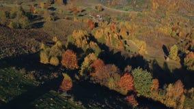 在喀尔巴阡山脉上的鸟瞰图,在秋天 股票录像