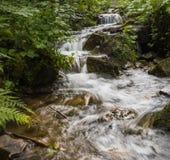 在喀尔巴阡山脉的一条山小河 库存照片