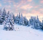 在喀尔巴阡山脉的壮观的冬天日出 库存图片