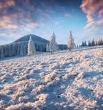 在喀尔巴阡山脉的意想不到的冬天日落与雪covere 库存图片