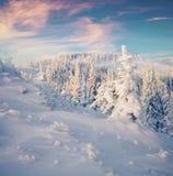 在喀尔巴阡山脉的意想不到的冬天日落与雪covere 免版税库存照片