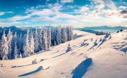 在喀尔巴阡山脉的意想不到的冬天早晨与雪盖 库存照片