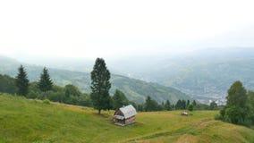 在喀尔巴阡山脉的有雾的早晨风景 乌克兰目的地和自然 股票视频