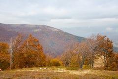 在喀尔巴阡山脉的秋天 免版税库存照片