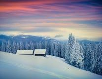 在喀尔巴阡山脉的五颜六色的冬天早晨 免版税库存图片