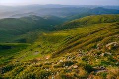 在喀尔巴阡山脉的五颜六色的夏天风景 库存图片