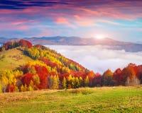 在喀尔巴阡山脉的五颜六色的秋天早晨 免版税图库摄影