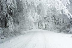 在喀尔巴阡山脉的冬天风景在Pezinok,斯洛伐克附近 免版税库存照片