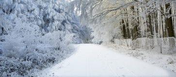 在喀尔巴阡山脉的冬天风景在Pezinok,斯洛伐克附近 库存照片