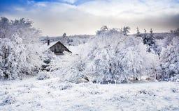 在喀尔巴阡山脉的冬天风景在Pezinok,斯洛伐克附近 免版税库存图片
