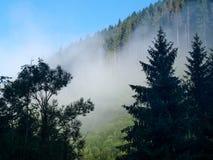 在喀尔巴阡山脉的早晨雾 免版税库存照片