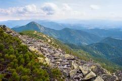 在喀尔巴阡山脉的石领域 免版税图库摄影