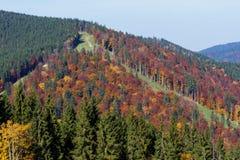 在喀尔巴阡山脉的秋天 库存图片