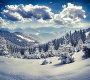在喀尔巴阡山脉的美好的冬天风景 免版税图库摄影