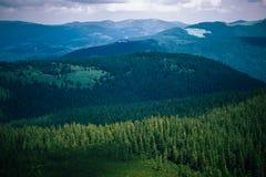 在喀尔巴阡山脉的美好的风景,乌克兰 免版税库存照片
