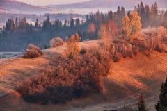 在喀尔巴阡山脉的11月早晨 免版税库存图片